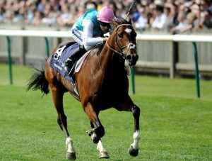 Find useful information regarding 2,000 guineas stakes!
