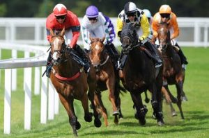 find out more about betting on horse races