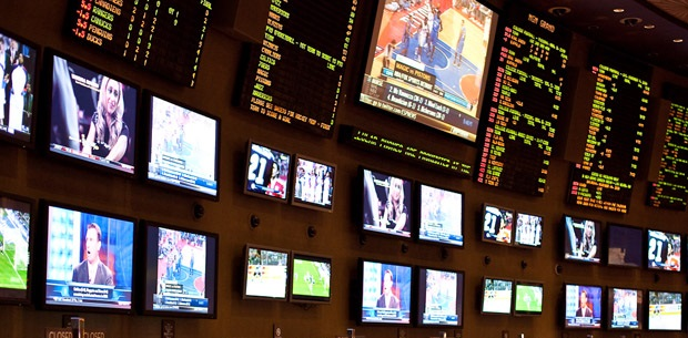 how to choose a sport and what bet to place