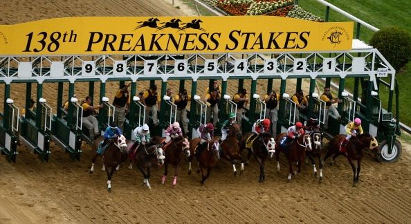 Find all about wagering on the Preakness Stakes online!