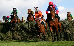 Who has won horse races of the grand national?