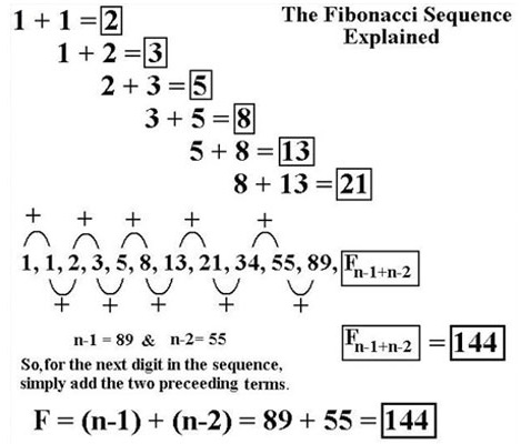 is the fibonacci seqeuence efficient for betting