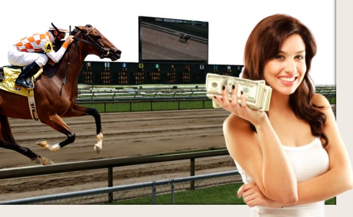 Why horse races are funded mostly by betting?