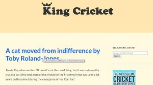 Is King Cricket a good blog?