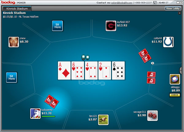 can you bluff at online texas holdem poker at bodog