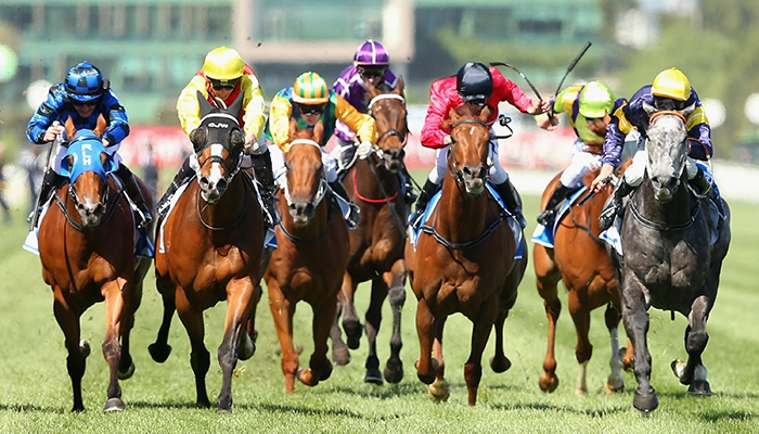 What do you know about the melbourne cup race?
