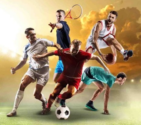 which are the sports covered by netbet review
