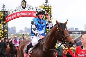 Where can you find information about the melbourne cup?