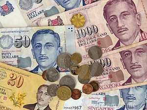 which payment options does the singapore currency offer