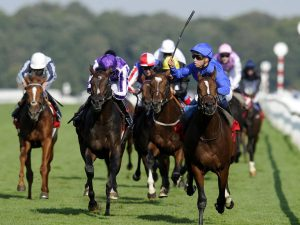 Why you should learn about St. Leger Stakes race?