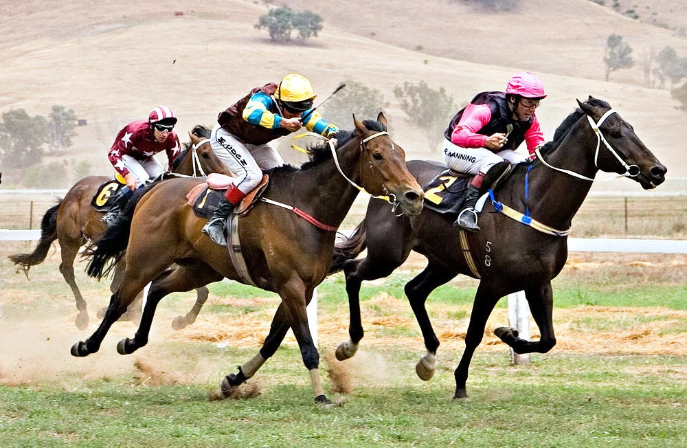 types of horse race betting